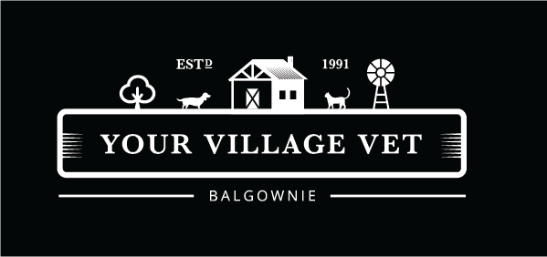 Balgownie Vet Hospital Logo